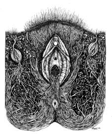 Thadé_anatomy_ecutlast