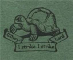 fabian_turtle-e1343494741562.jpg